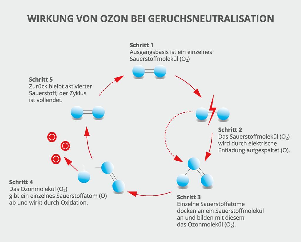 Wirkung von Ozon bei Geruch